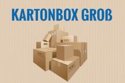 kartonbox-gross