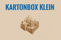 kartonbox-klein